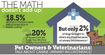 PRN Pharmacal Launches Canine Urinary Health Website