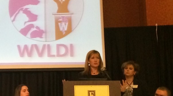 Women's Veterinary Leadership Development Initiative Announces AVMA 2014 Sessions