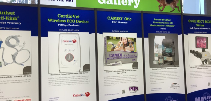 PRN® Pharmacal Introduces CAMEO™ Otic
