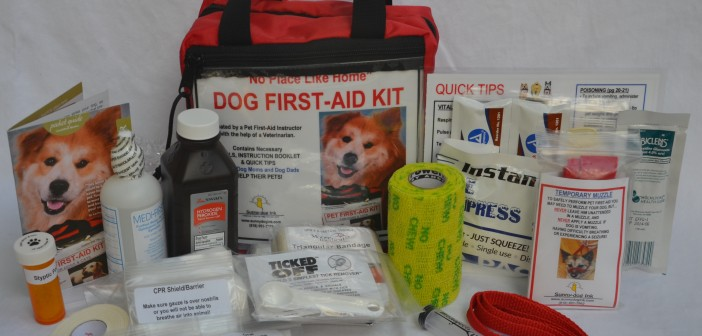 Win A Pet First-Aid Kit From SunnyDog Ink During National Preparedness Month