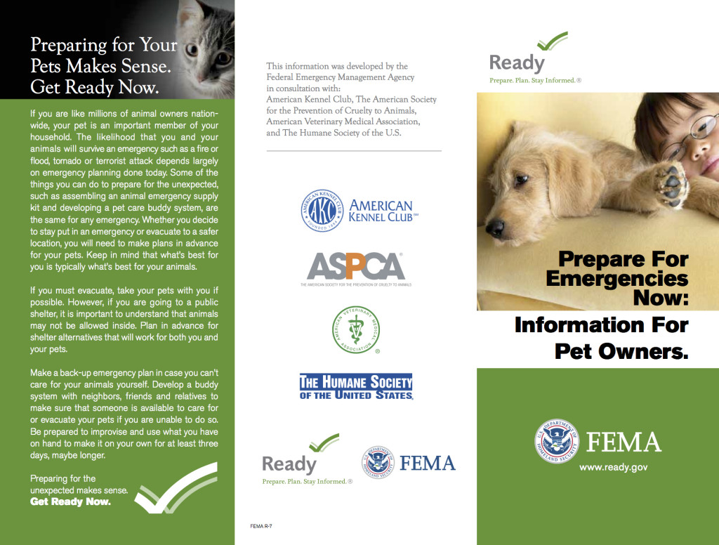 fema pet brochure
