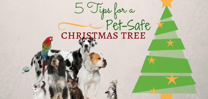 5 Tips for a Pet-Safe Christmas Tree