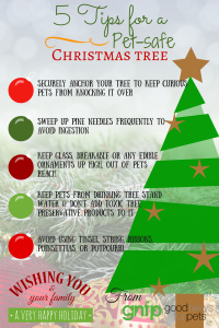 Share These Tips To Encourage A Safe Holiday For Everyone
