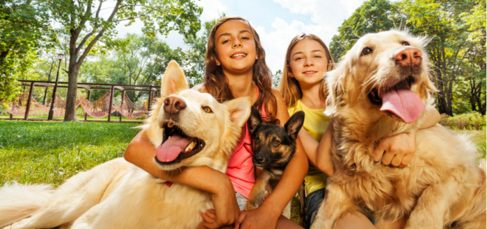 Dogways Unleashes New App to Make NYC Dogs Happier and Healthier