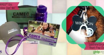 cameo otic contest