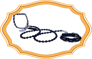 VP Black Pearl Leash and Collar