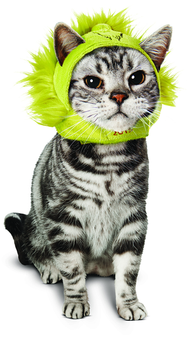grinch hat for dogs