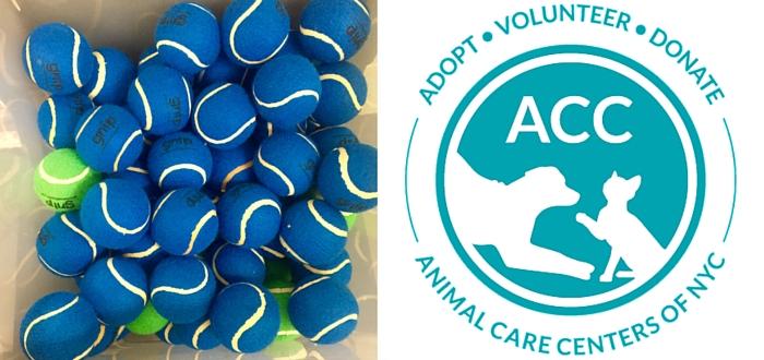 Goodnewsforpets Donates Over 100 Tennis Balls to NYACC