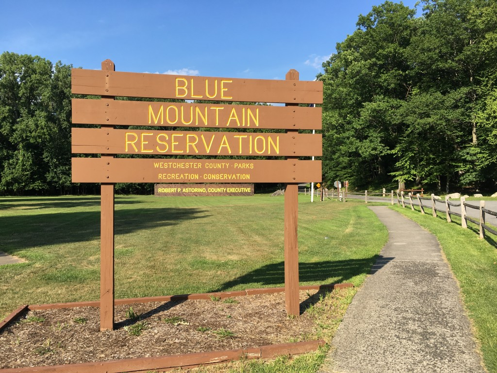 Mutts on the Mountain will take place at Blue Mountain Reservation in Peekskill.