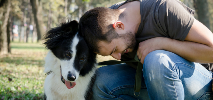 New Research Says Therapy Dogs Are OK!