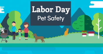 labor day pet safety