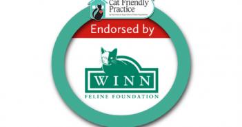 Winn endorses AAFP CFP