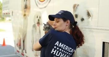 hurricane matthew american humane