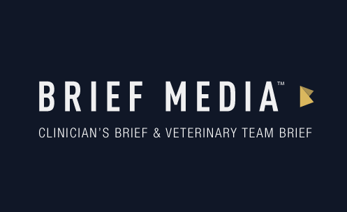 brief media new york VET