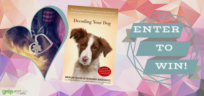 "February ""Decoding Your Dog"" & Heart-Paw Charm Contest"