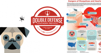 double defense heartworm