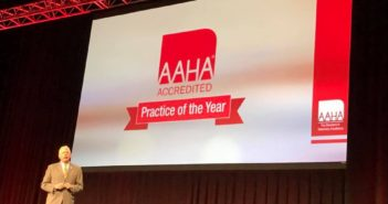 aaha practice of the year 2017