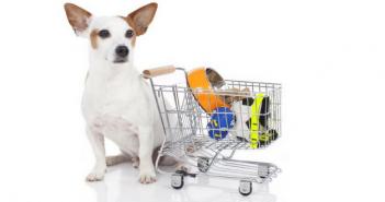 pet industry spending