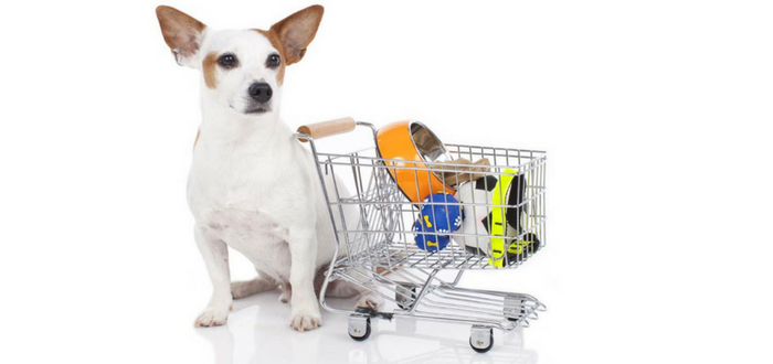 Pet Industry Spending at All-Time High: Up $6 Billion