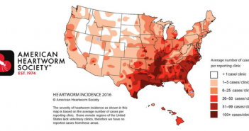 ahs heartworm incidence map