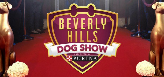 From Westminster to Beverly Hills, It's All Good For Dogs