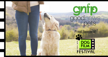 dog film festival goodnewsforpets