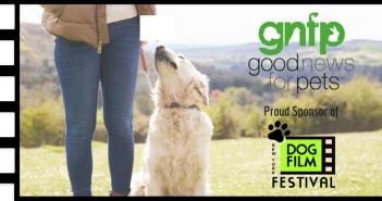dog film festival goodnewsforpets