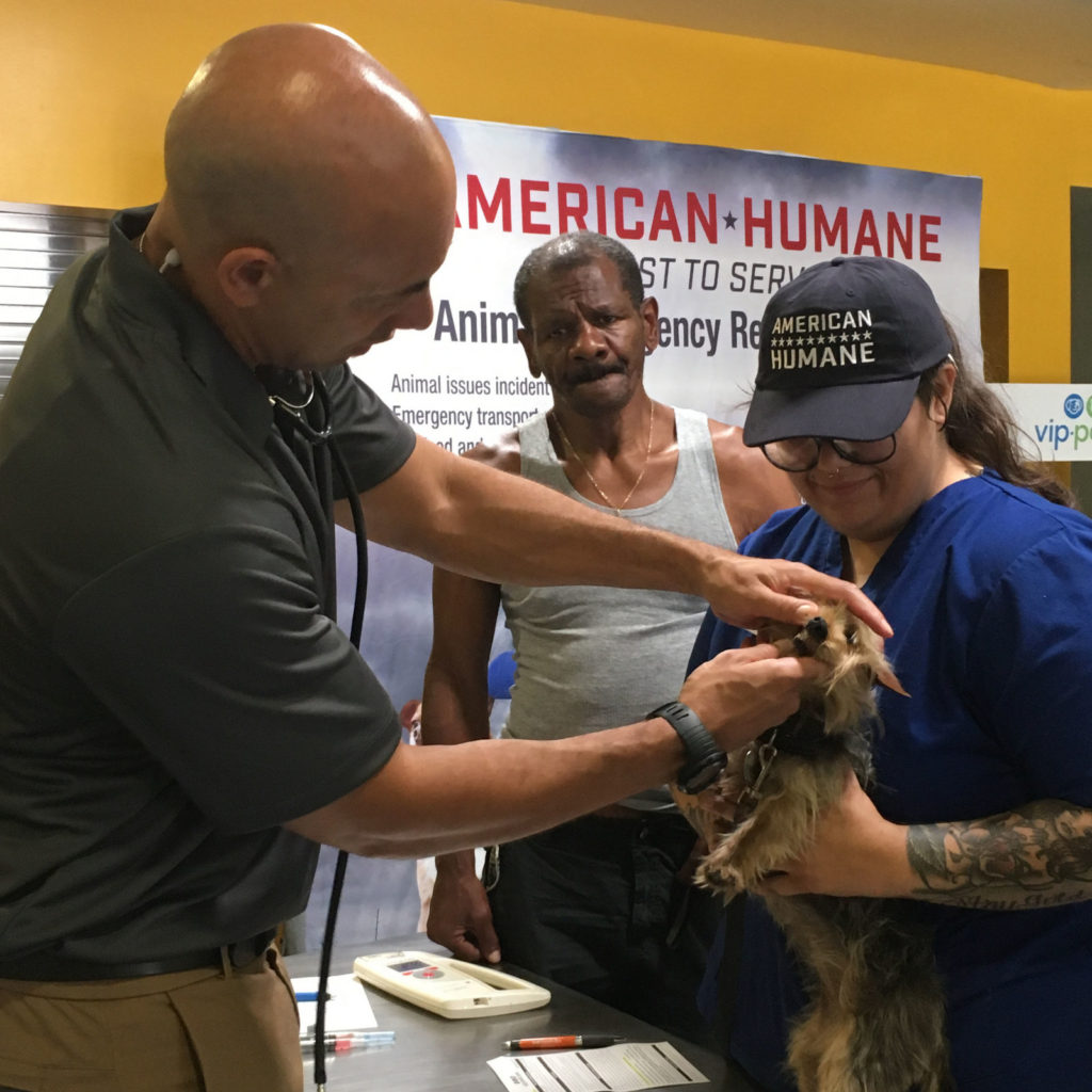 american humane pets of the homeless