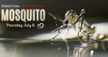 mosquito discovery channel