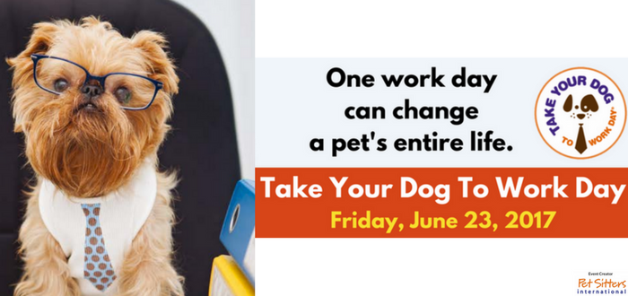 Take Your Dog To Work Day on June 23 Offers Fun for Participants, Hope for Pets in Need