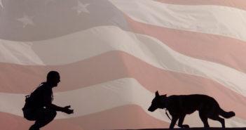 american humane patriot pups