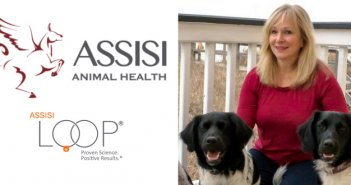 assisi animal health assisi loop judy korman