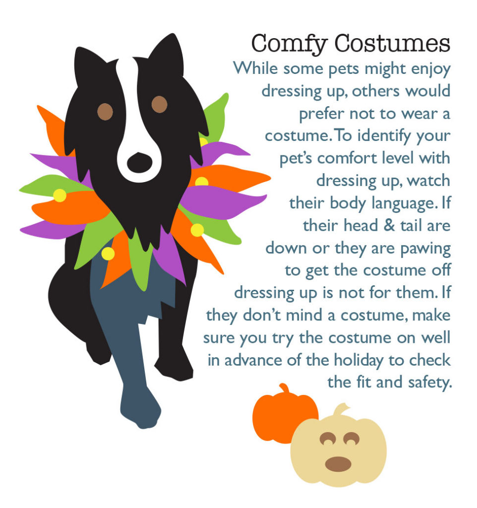 fear free halloween costumes costume