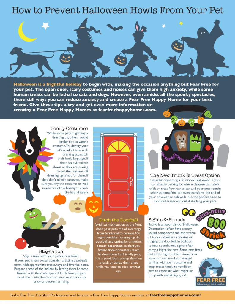fear free halloween pet safety costumes costume