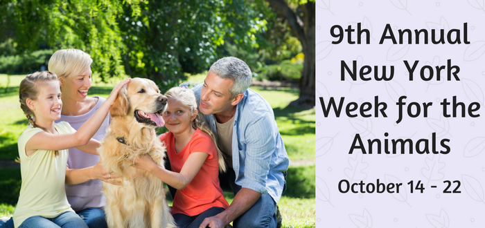 New York Week for the Animals Celebration is October 14-22, 2017!