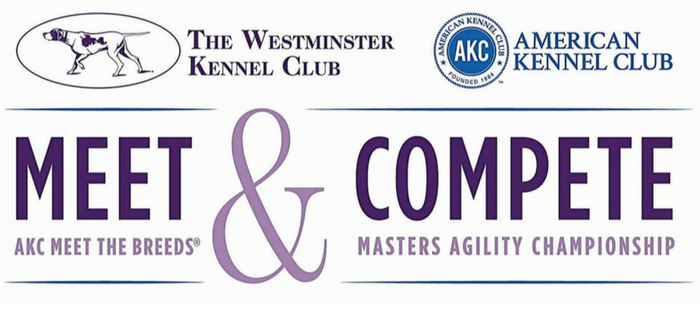 Westminster Kennel Club & American Kennel Club Set To Take Over NYC With Meet & Compete