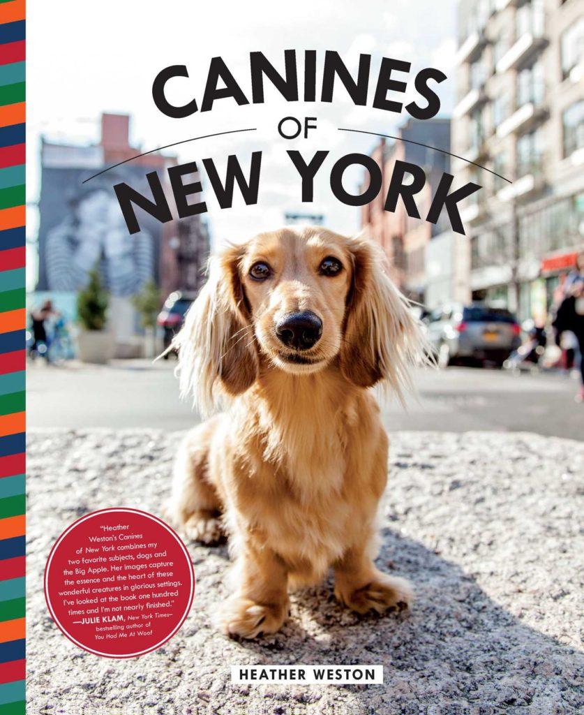 canines of new york heather weston