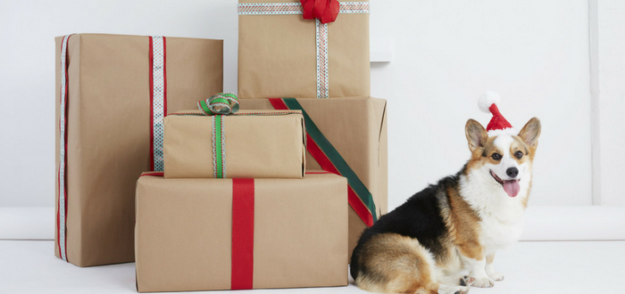 New Study Finds That Humans Lean On Their Pups to Get Through the Holidays