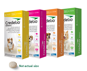 credelio elanco animal health fleas ticks
