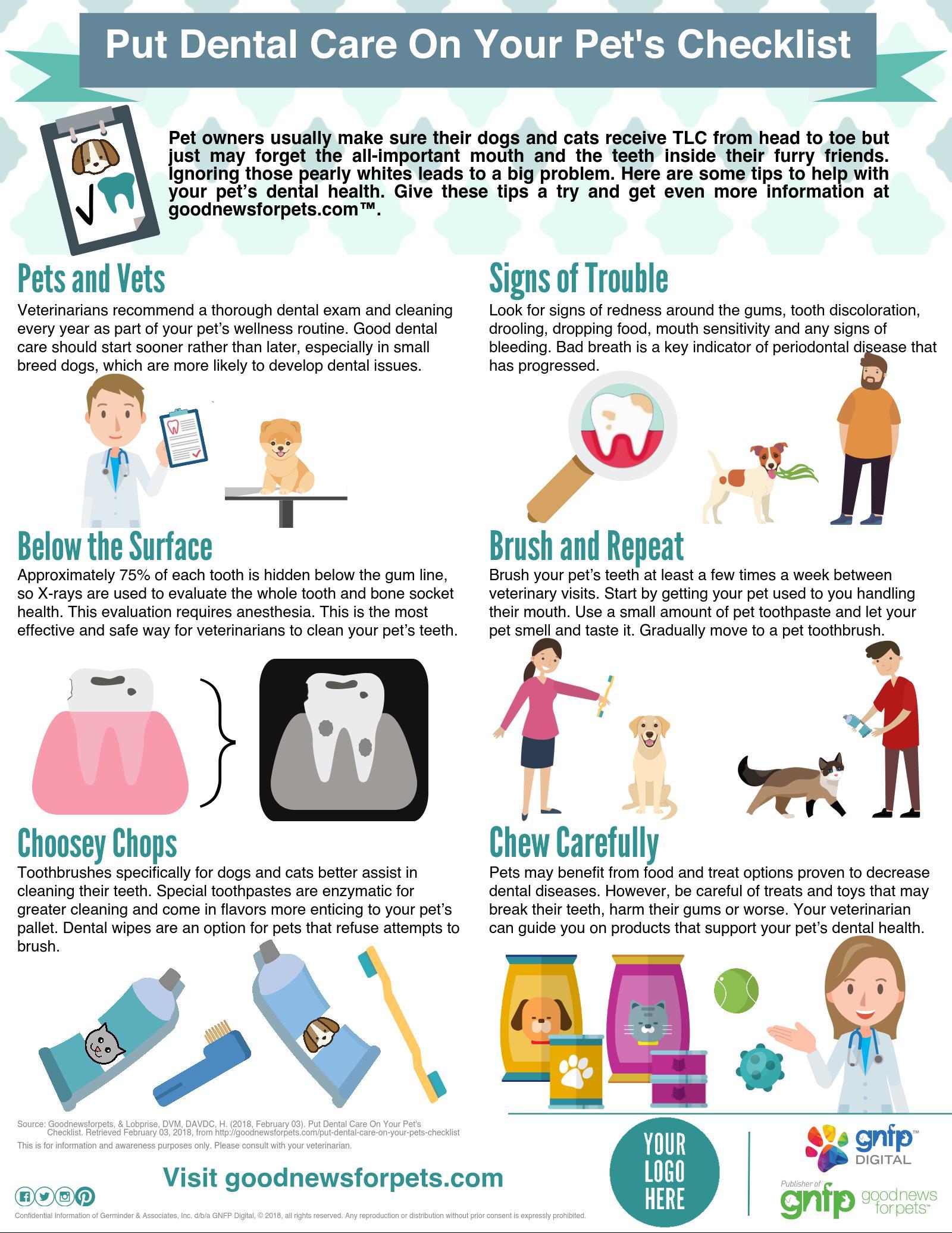 Feline Pain Infographic