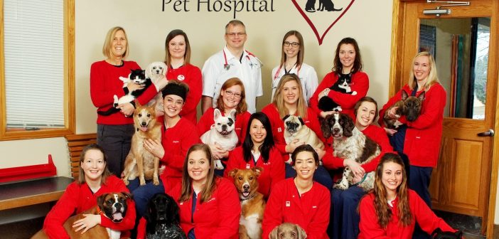 Country Hills Pet Hospital Named AAHA Practice of the Year