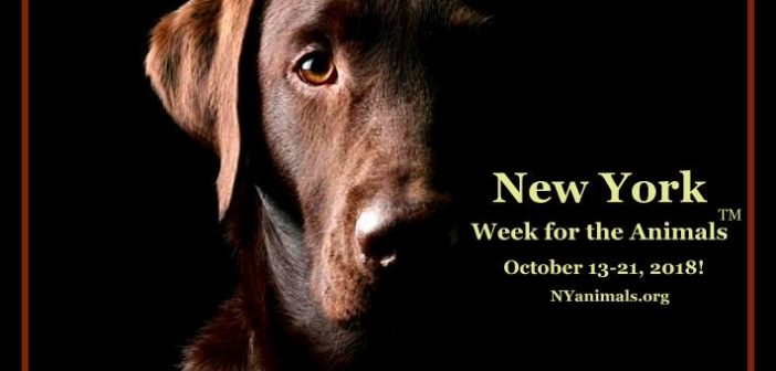 Celebrate New York Week for the Animals! October 13-21, 2018