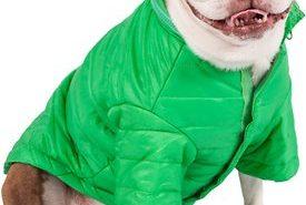 Pet Life Green Coat