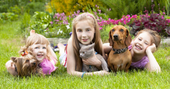 Children and their Pets