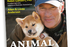 AHA animal stars book