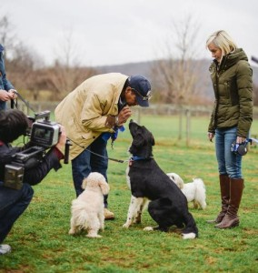 Bryant and Hilary Gumbel being filmed for Jill Rappaport's Best in Shelter at Main Line Animal Rescue. The program airs Saturday February 21, 2015 (7:00 pm EST). (PRNewsFoto/Main Line Animal Rescue)
