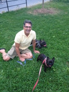 French Bulldogs Harley, 3½, and Olive, 2½, with owner Thomas FlynnPhoto Courtesy of Thomas Flynn