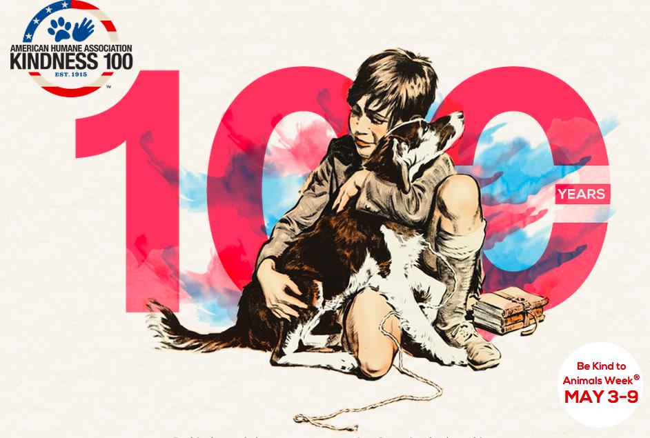 kindness 100