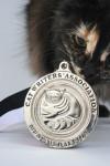 cat writers cwa muse medallion