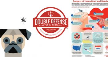 double defense heartworm